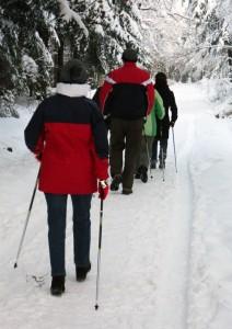 Nordic Waliking sulla Neve